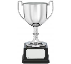 Business Awards Cups