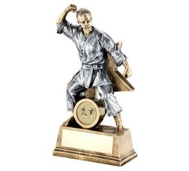 Martial Arts Trophies Female Martial Arts Trophies