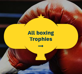 Boxing Trophies All Boxing Trophies