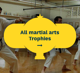Martial Arts Trophies All Martial Arts Trophies