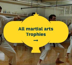 Martial Arts Trophies All Martial Arts Trophies