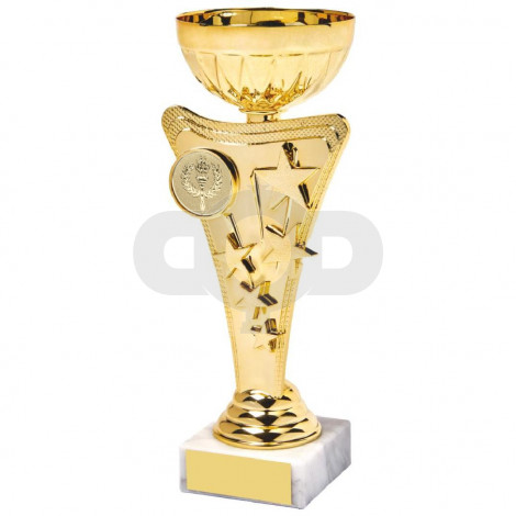 Shiny Gold Star Trophy Cup