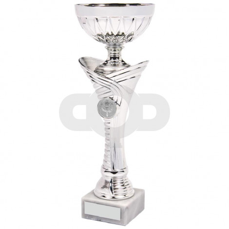 Shiny Silver Trophy Cup