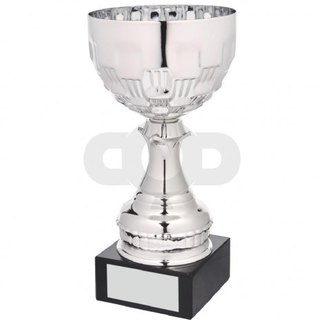 Silver Bowl on Black Marble Award