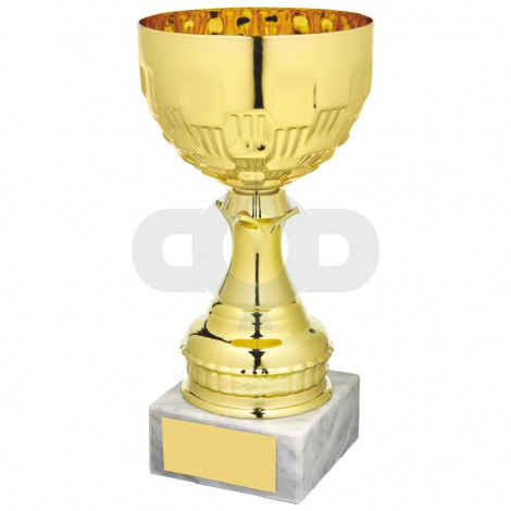 Gold Bowl on White Marble Award