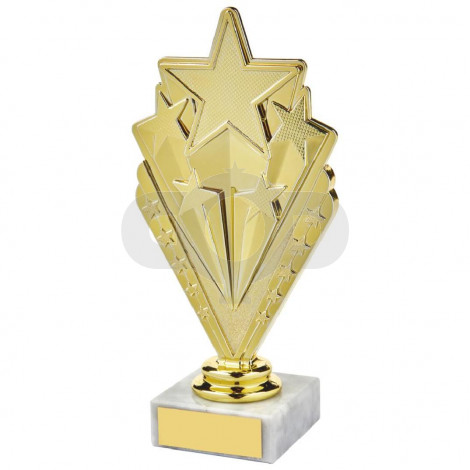 Gold,Silver & Bronze Star Holder Awards