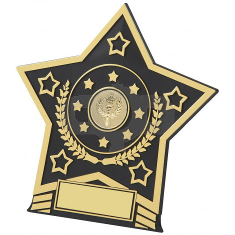 Plastic Star Plaque Award