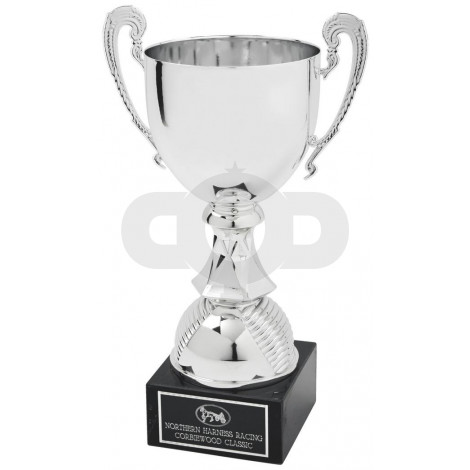 Silver Coloured Trophy Cup