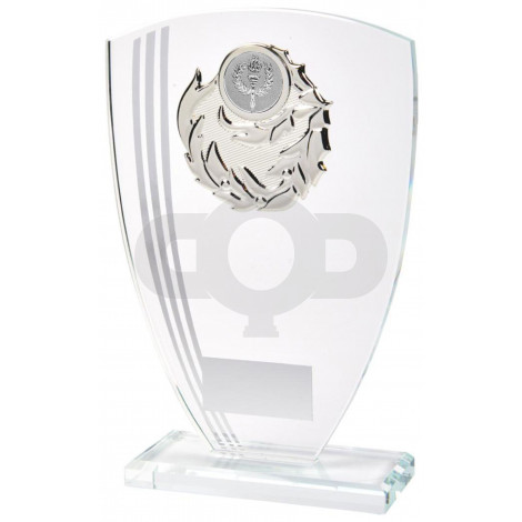 Glass Awards supplied in Presentation Boxes