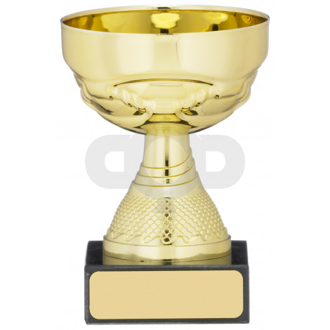Gold Cup Trophy