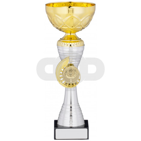 Gold Silver Cup Trophy