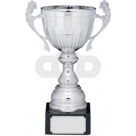 Silver Cup Trophy With Handles