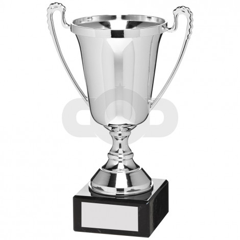Silver Plastic Cup Trophy