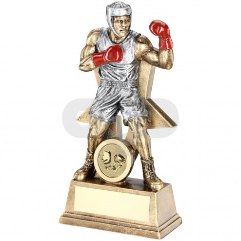 Male Boxing Figure With Star Backing Trophy