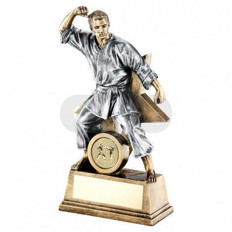 Bronze & Pewter Male Martial Arts Figure With Star Backing Trophy