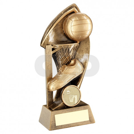 Bronze Netball With Twisted Backdrop Trophy
