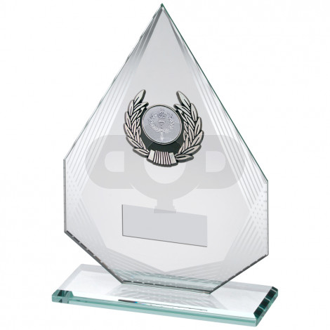 Diamond Glass With Silver & Black Trim Trophy
