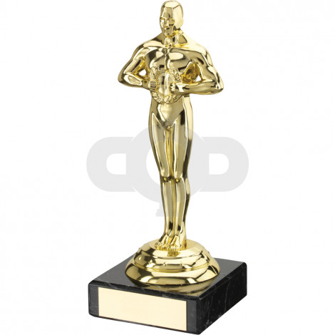 Plastic & Marble Achievement Trophy