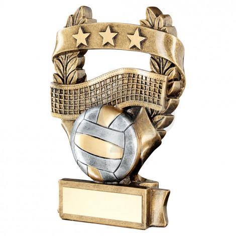Bronze & Pewter Volleyball 3 Star Wreath Award Trophy