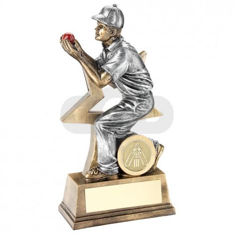 Cricket Fielder Figure With Star Backing Trophy