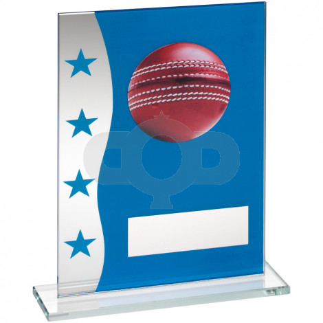 Blue & Silver Printed Glass Plaque With Cricket Ball Image Trophy