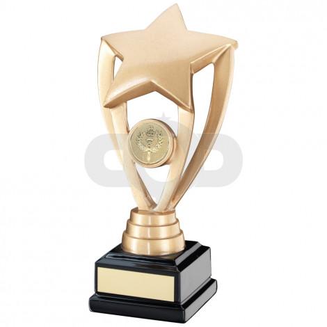 Shooting Star Holder On Black Base Trophy