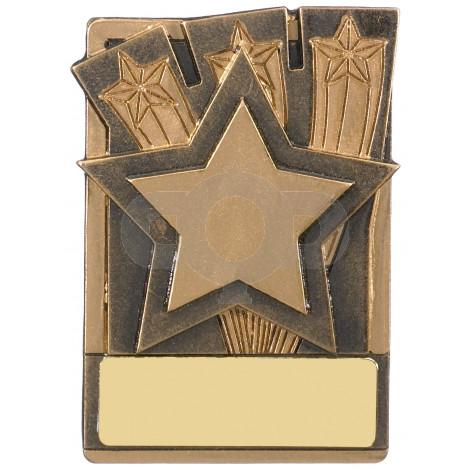 Mini Magnetic Star Award