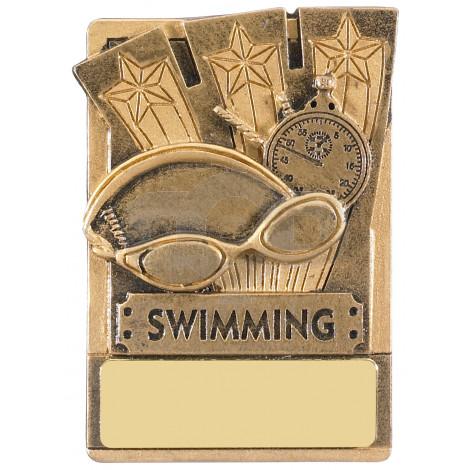 Mini Magnetic Swimming Award