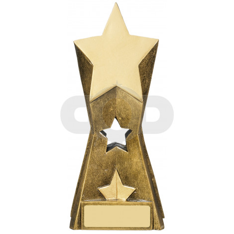 Star Achievement Award