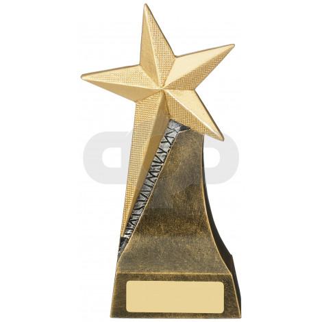 Gold Star Achievement Award