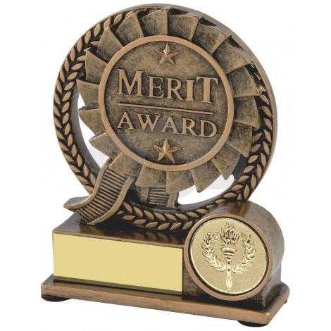 Resin Merit Award
