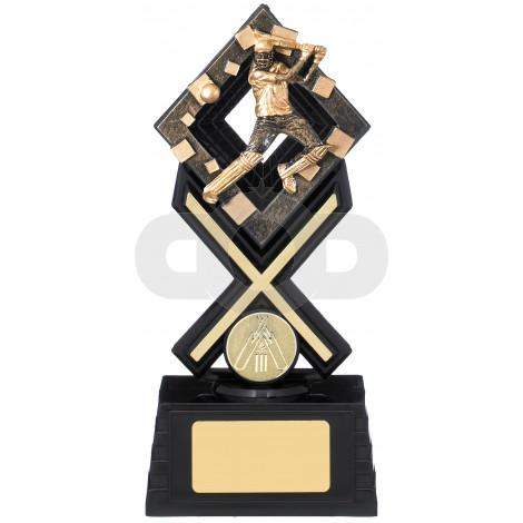 Activ8 Cricket Award