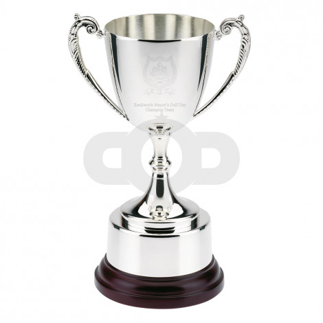 Silver Bright Plated Traditional Cup