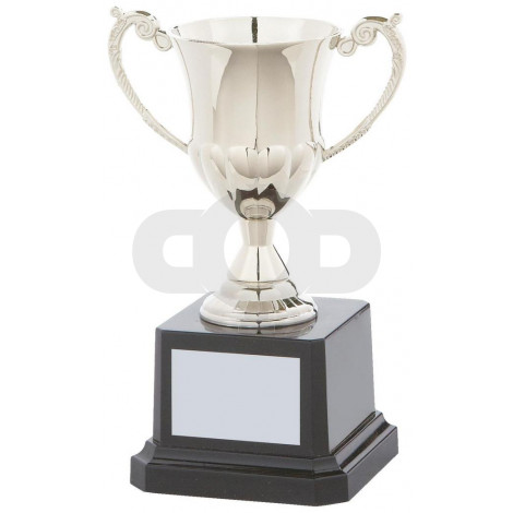 Traditional Nickel Plated Presentation Cup