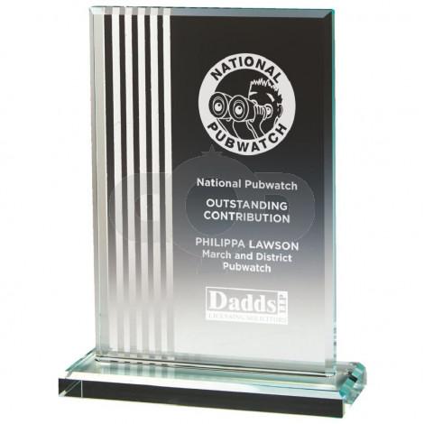 Curved Glass Shield Award