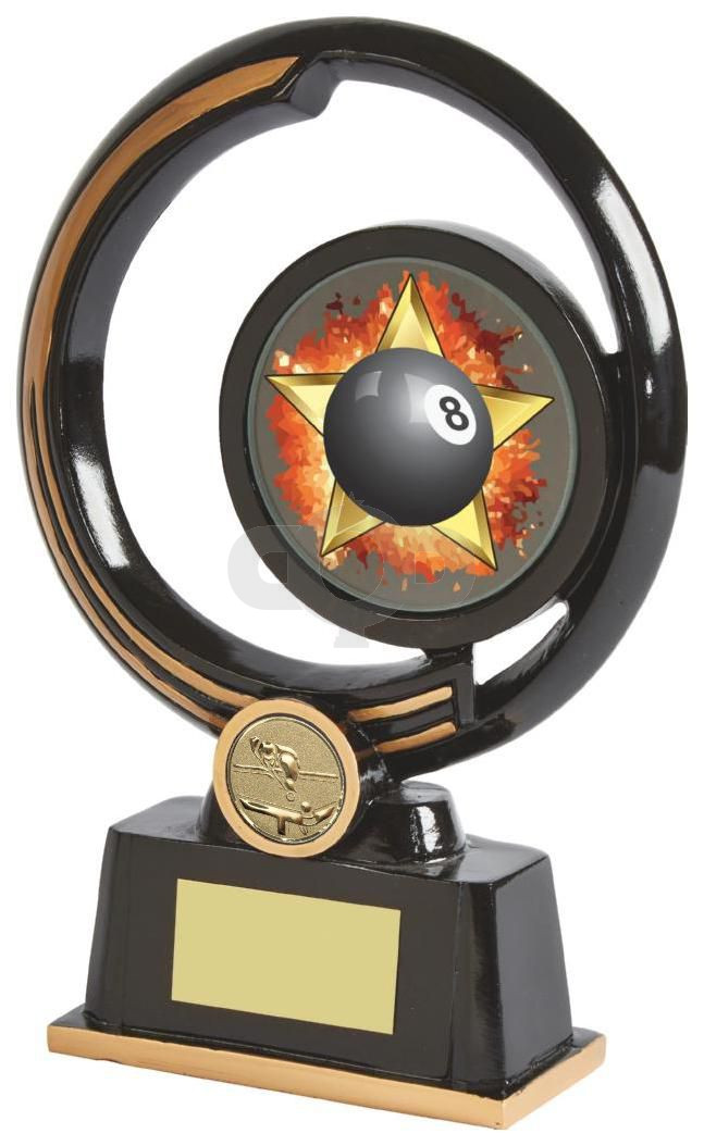 Stunning Black Resin Pool Awards