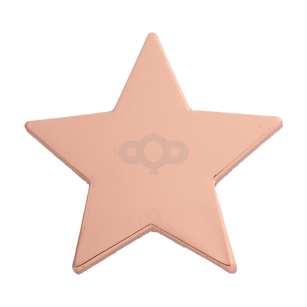 Star Enamel Bronze Badge