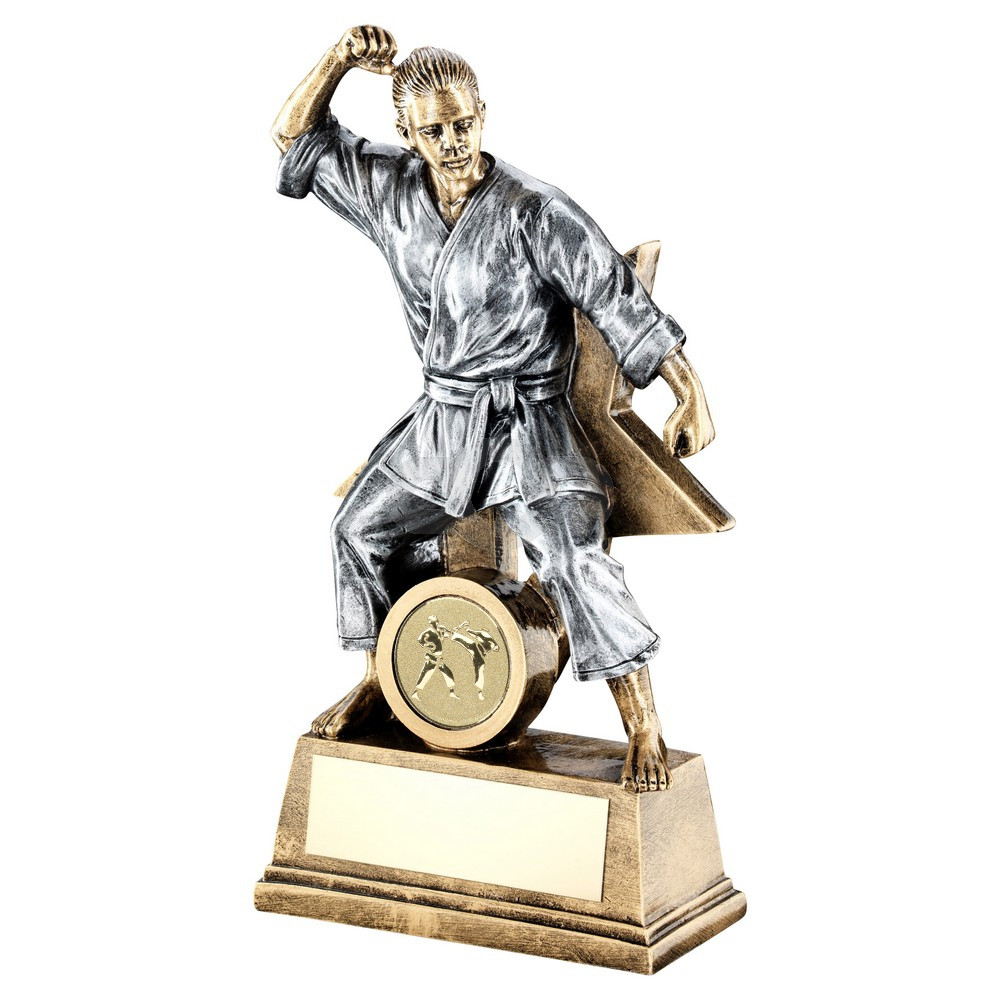 Bronze & Pewter Female Martial Arts Figure With Star Backing Trophy