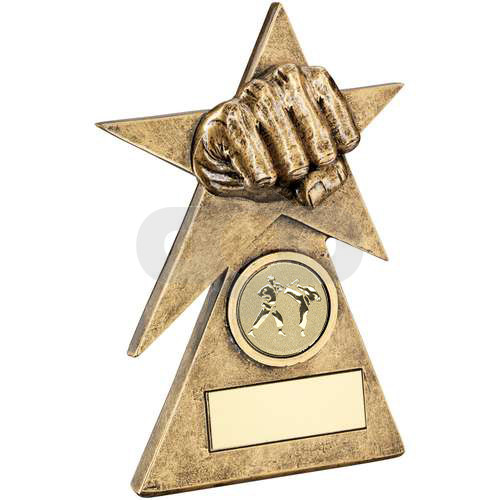 Martial Arts Star On Pyramid Base Trophy