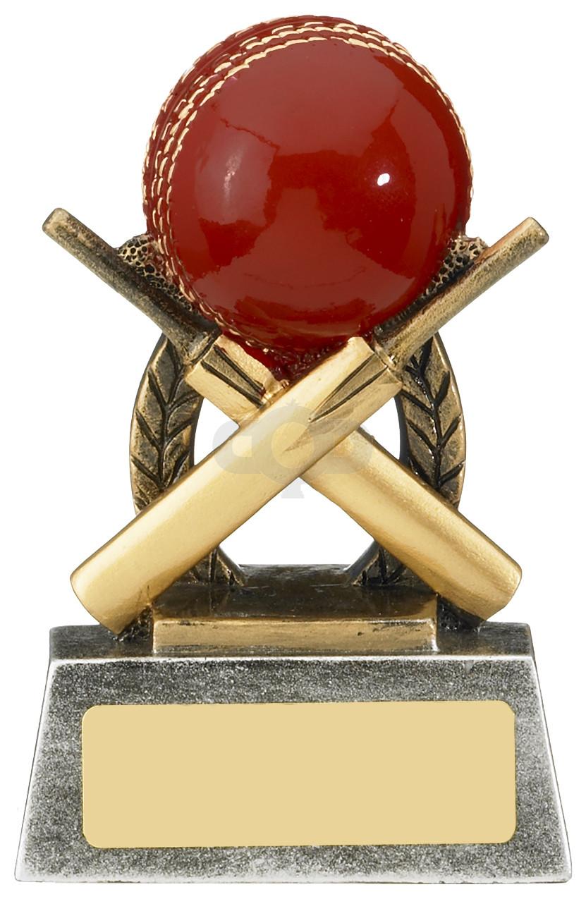Escapade Cricket Award