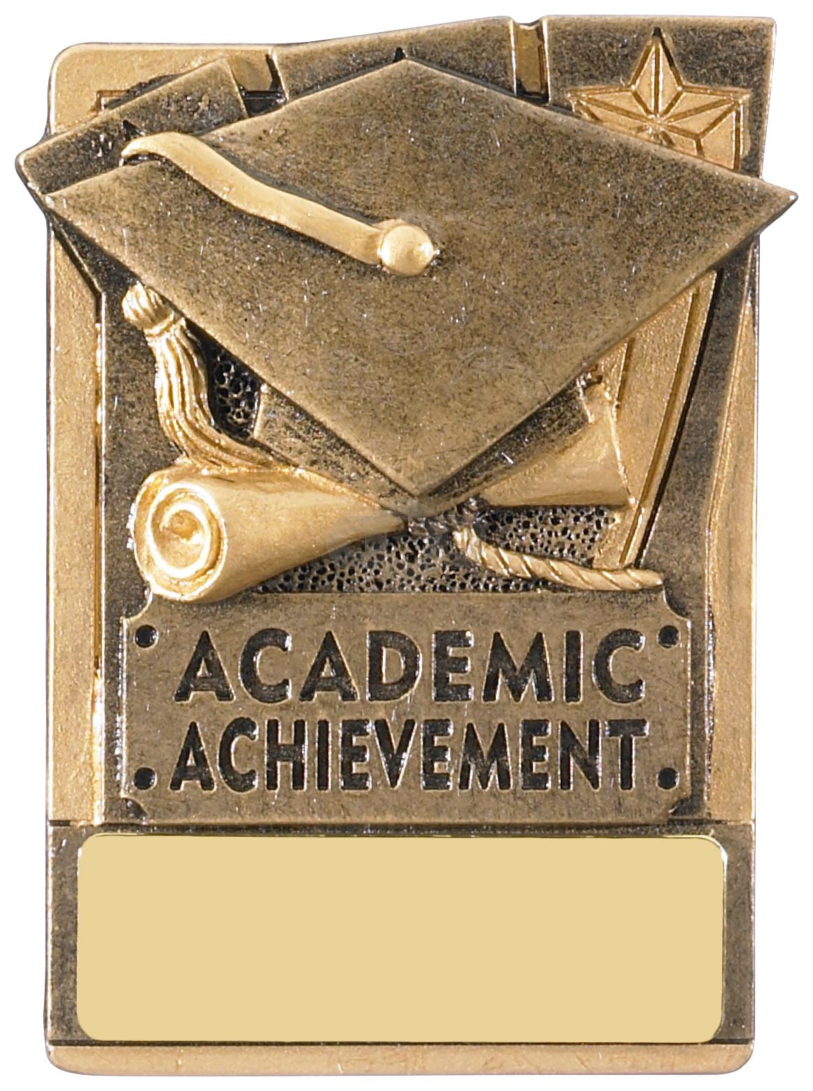 Mini Magnetic Academic Award