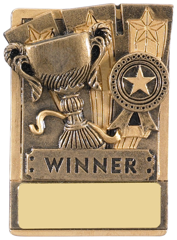 Mini Magnetic Winner Award