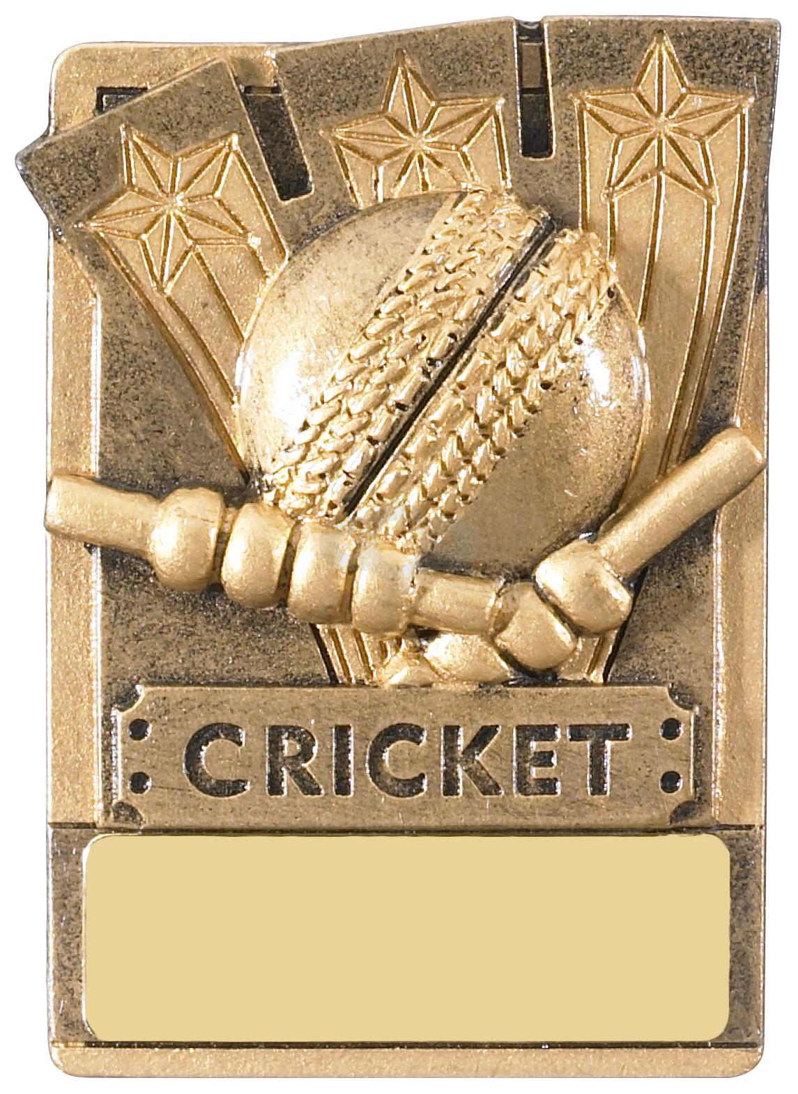 Mini Magnetic Cricket Award