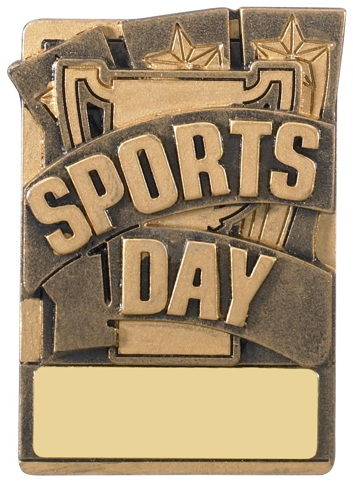 Mini Magnetic Sports Day Award
