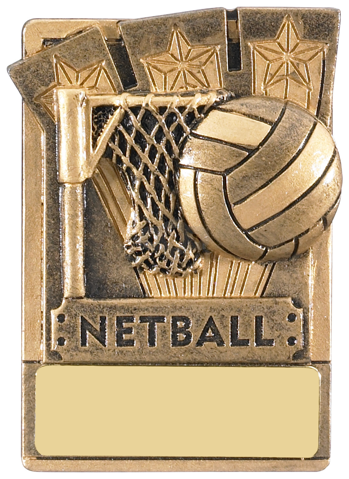 Mini Magnetic Netball Award