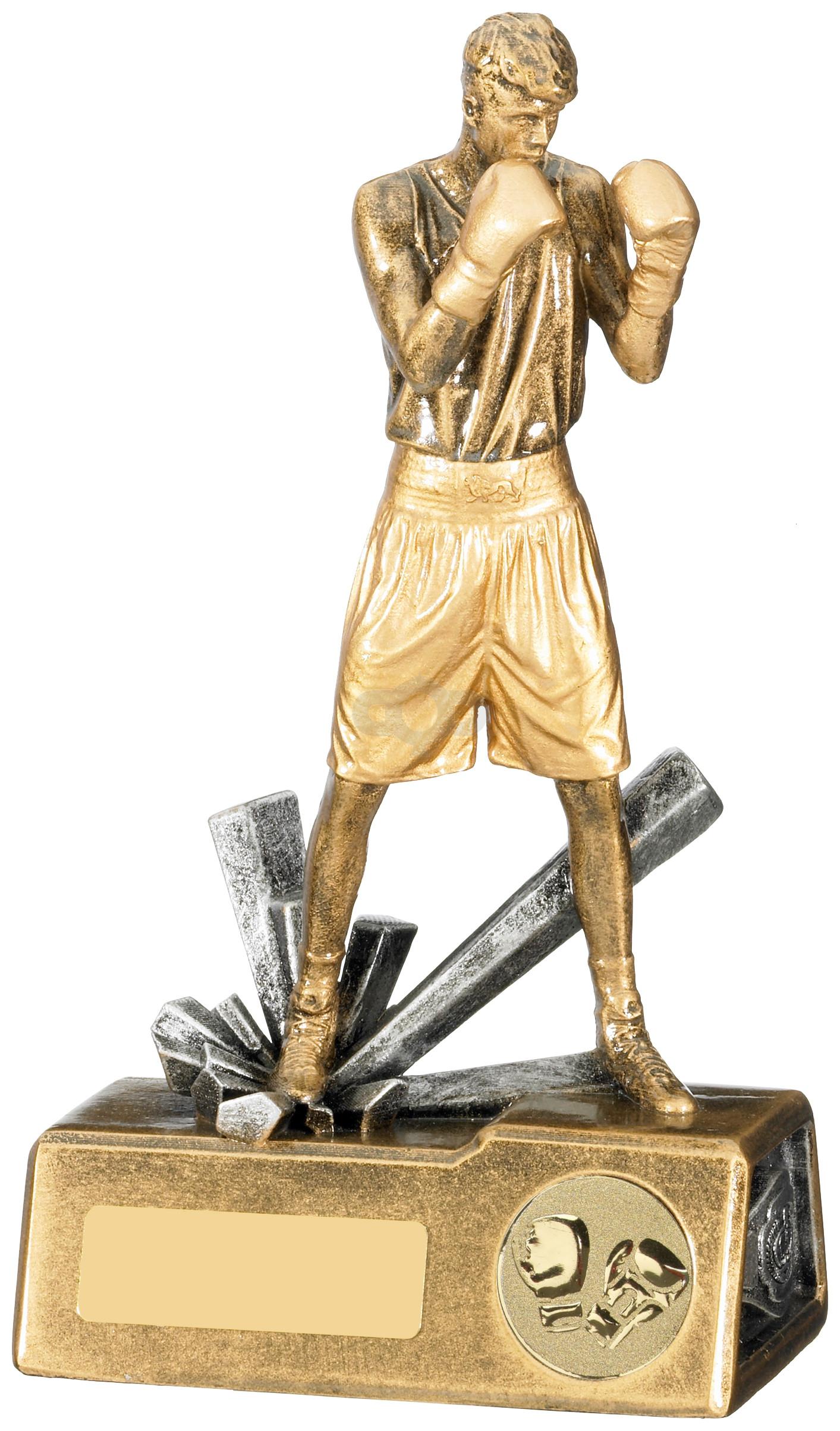 Boxer Male Award