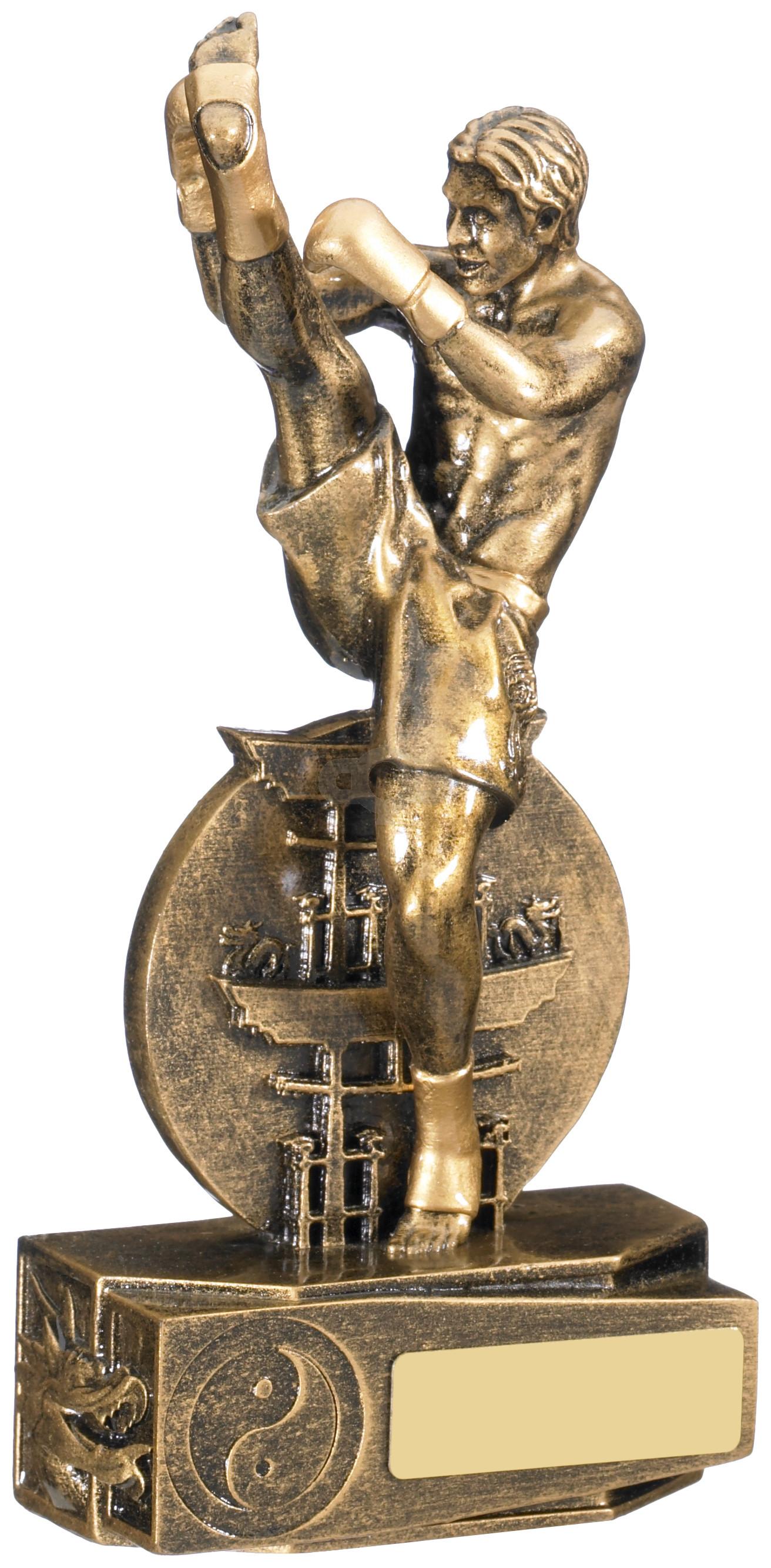 Male Kickboxing Award