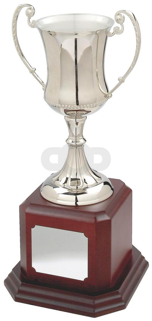Traditional Nickel Plated Trophy Cup on Dark Wood Base