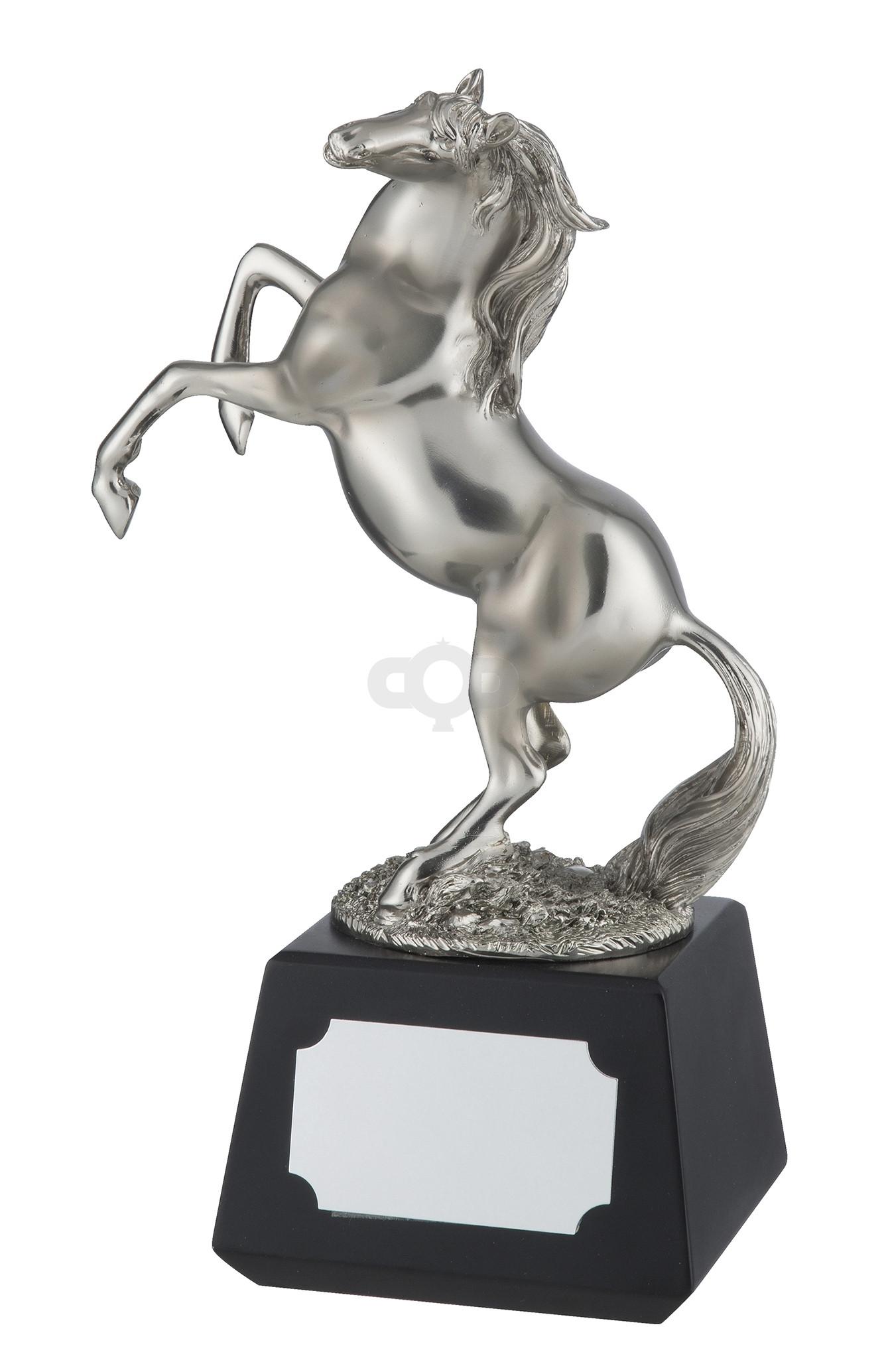 Silver Finish Horse Award