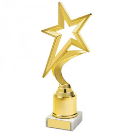 Gold Shooting Star Holder Award